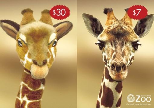 zoo_argentina01