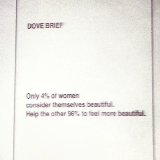 briefing_dove