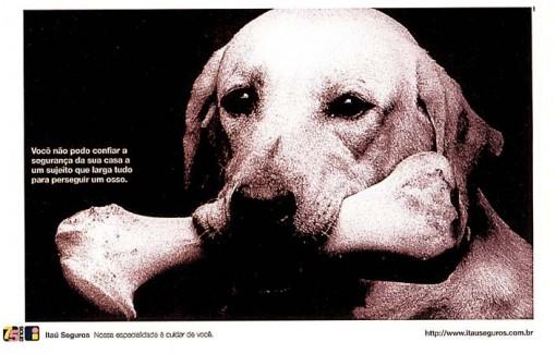 itau-seguros-anuncio-cachorro-510x325 Carlos Domingos