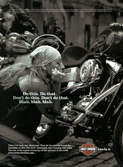 harley-davidson_do_this_do_that_2006