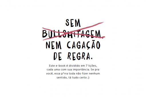sem-bullshitagem-510x342 Voe como um zangão | E-book