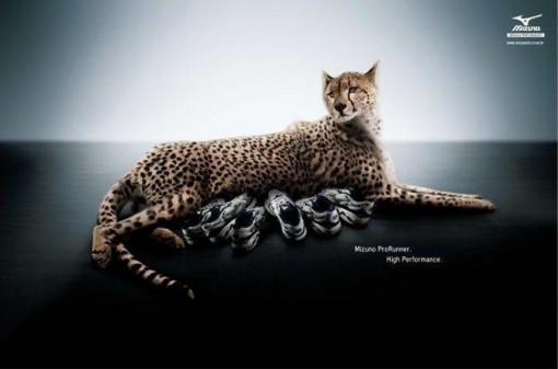 mizuno-prorunner-leopard-almapbbdo-anuncio-510x337 Mizuno Prorunner | AlmapBBDO