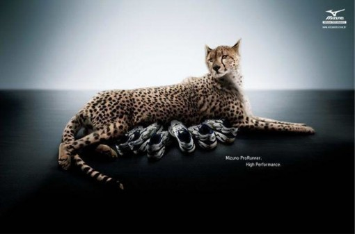 mizuno-prorunner-leopard-almapbbdo-anuncio